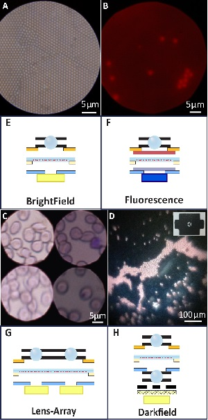 Foldscope Configurations