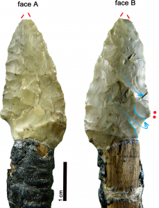 PLOS ONE Otzi the Iceman tools
