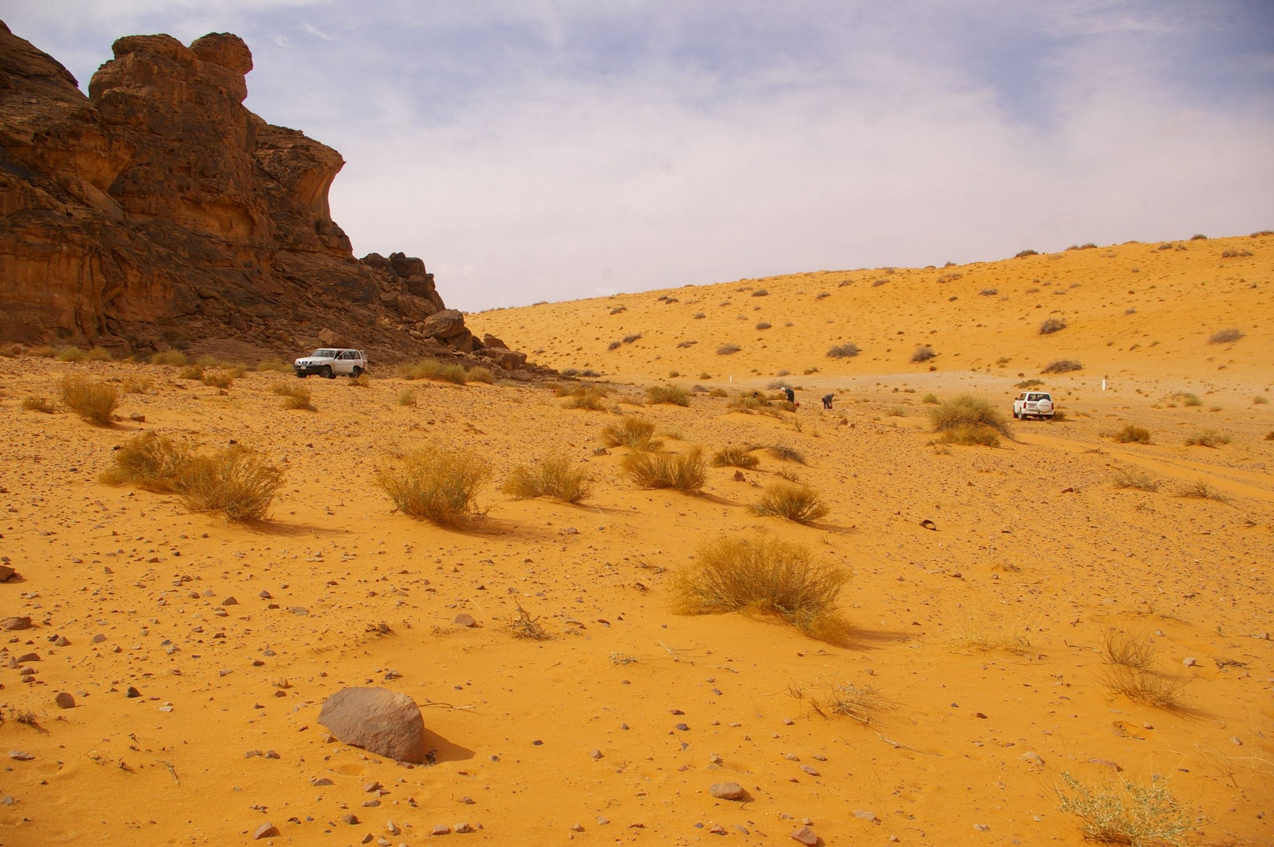Palaeodeserts Project Crassard et al PLoS ONE 2013