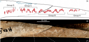 PLOS ONE: Upper Paleolithic Ritualistic Cannibalism