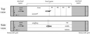 pone.0077589 Figure 4